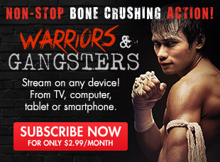 Warriors & Gangsters - Bone Crushing Action
